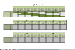 projektmanagement mit Excel-Vorlagen