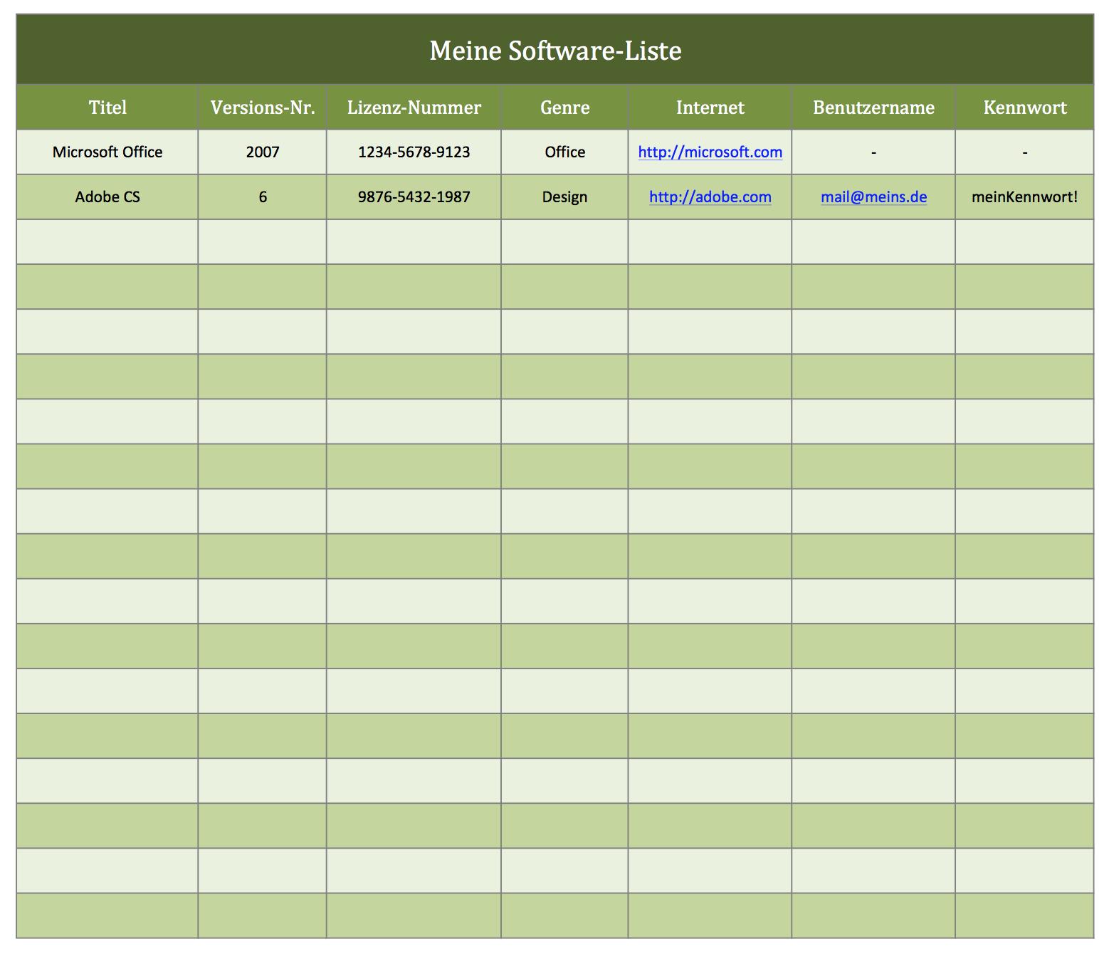 Ihr Software-Katalog als Excel-Vorlage