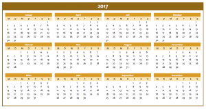 Excel-Jahreskalender 2017 in orange