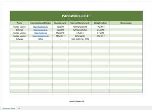 Passwortliste mit Excel