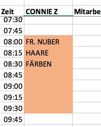 Beispiel für einen Eintrag im Terminplaner